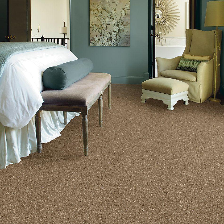Shaw Floors Roll Special Xv930 Bridgewater Tan 00709_XV930