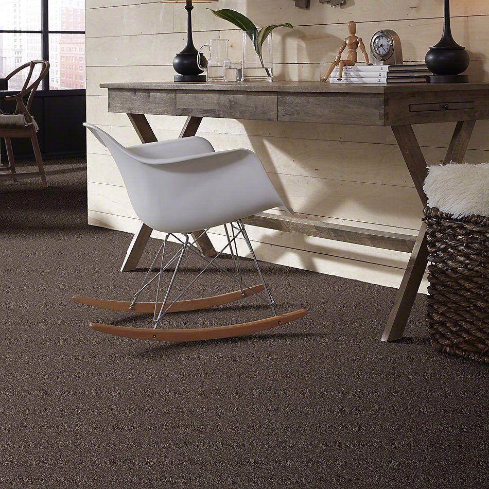 Shaw Floors Full Court 15′ Molasses 00710_52Y82