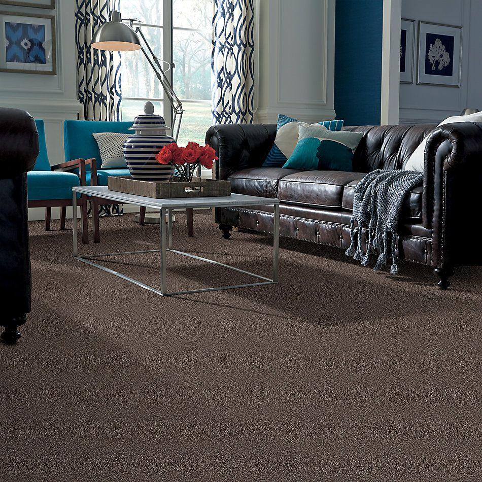 Shaw Floors Shaw Flooring Gallery Ellendale 15′ Molasses 00710_5301G