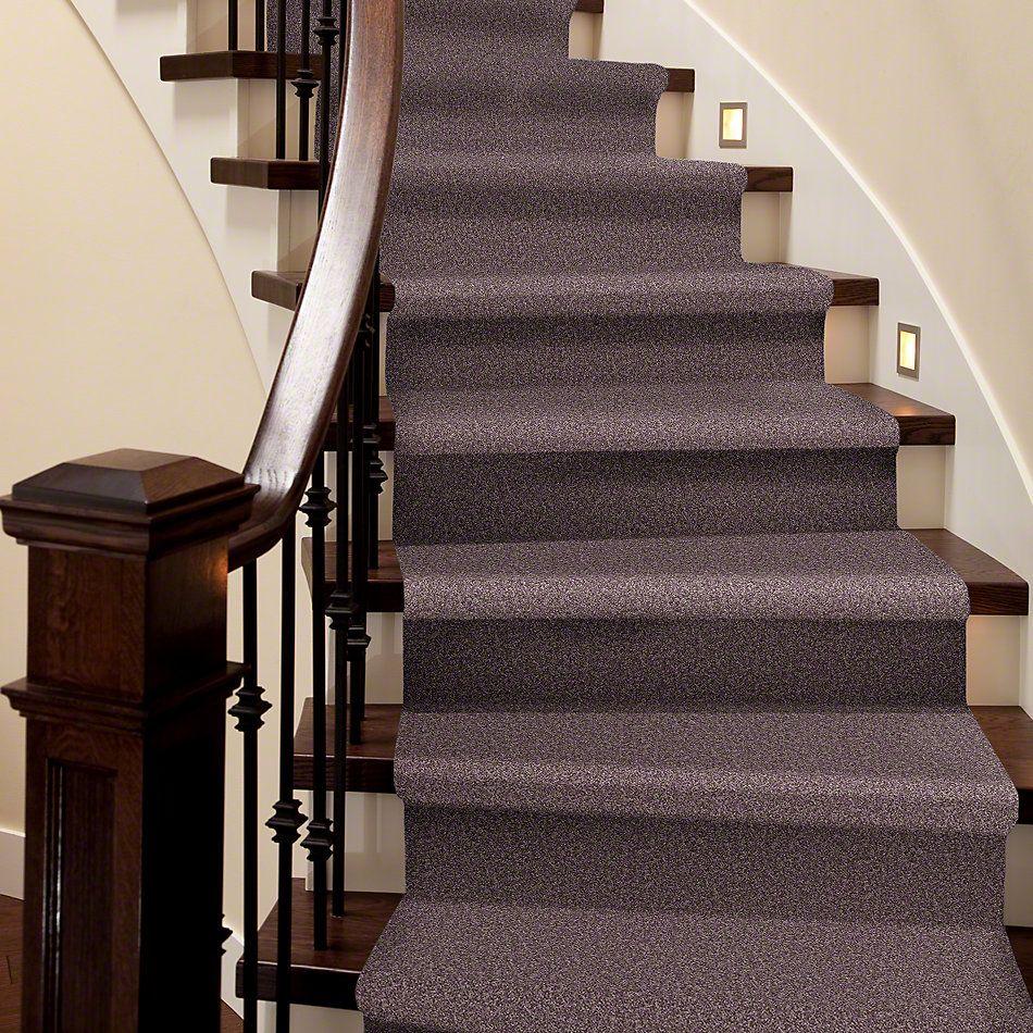 Shaw Floors Shaw Flooring Gallery Union City I 12′ Molasses 00710_5305G