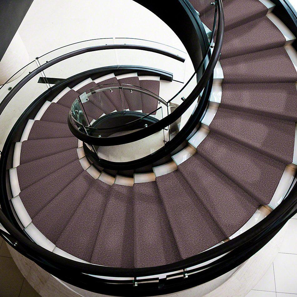 Shaw Floors Shaw Design Center Royal Portrush I 12′ Molasses 00710_5C611