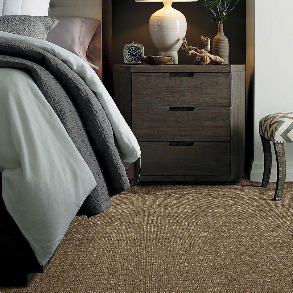 Shaw Floors Instant Impact Prairie 00710_E0530