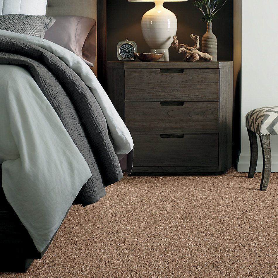 Shaw Floors Cabinanet Solid Saddle Tan 00710_E0663
