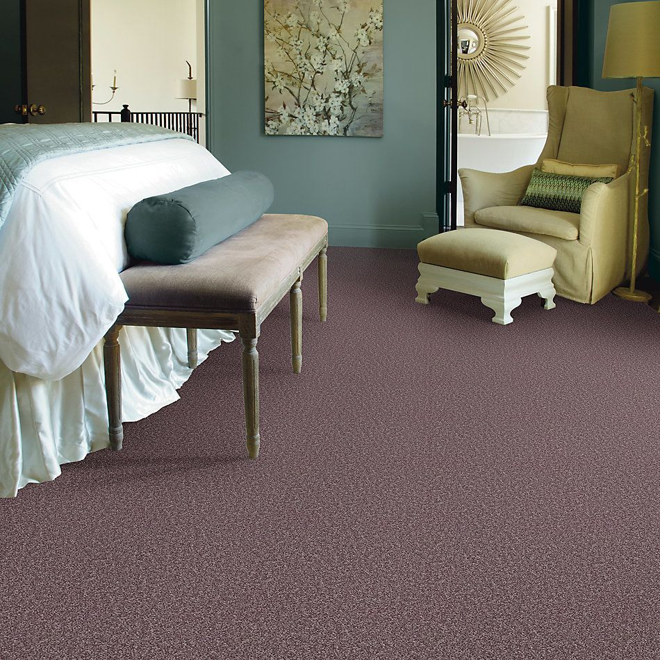 Shaw Floors Value Collections All Star Weekend I 12 Net Molasses 00710_E0792