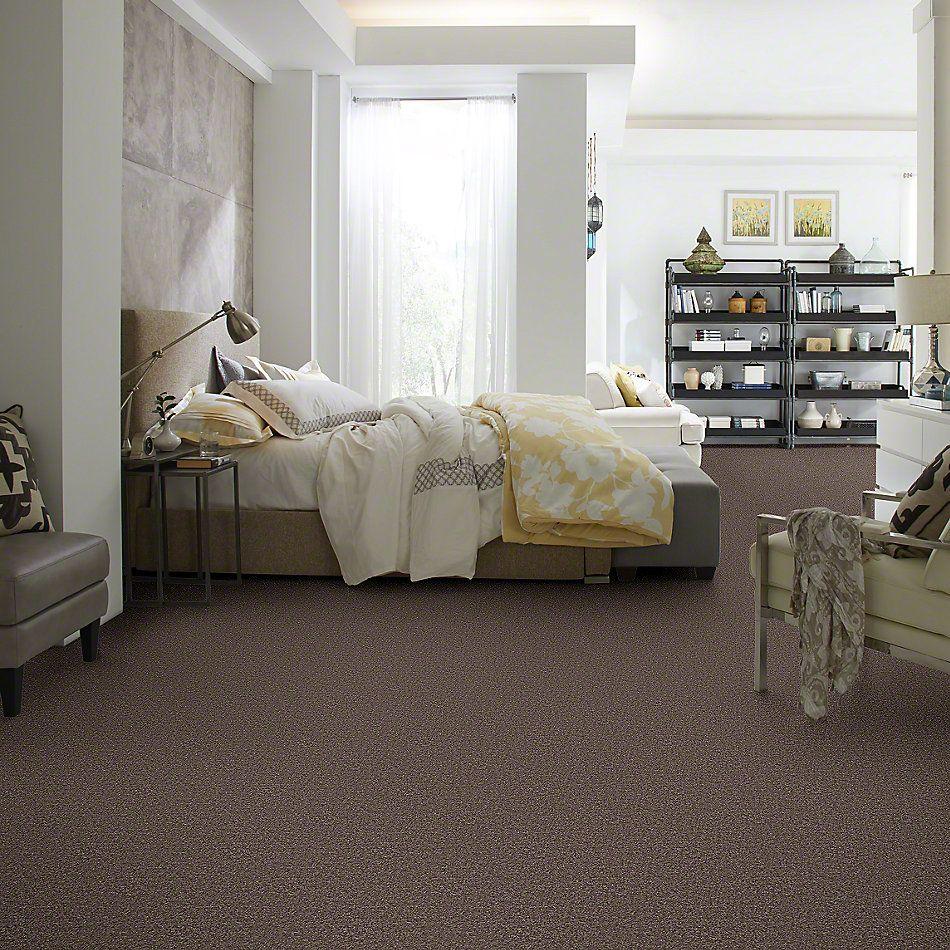 Shaw Floors SFA Drexel Hill III 12′ Molasses 00710_EA055