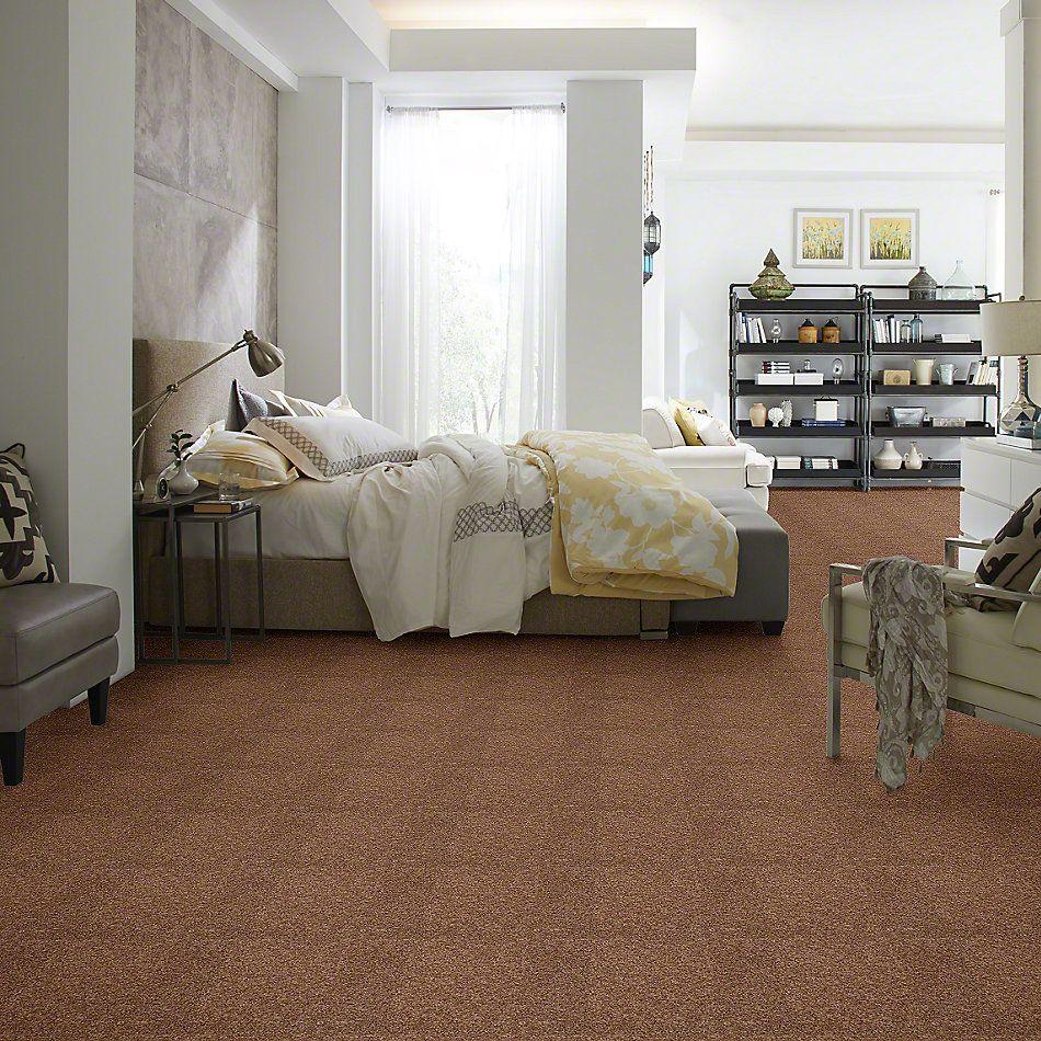 Shaw Floors Anso Colorwall Designer Twist Gold (s) Kodiak Bear 00710_EA090