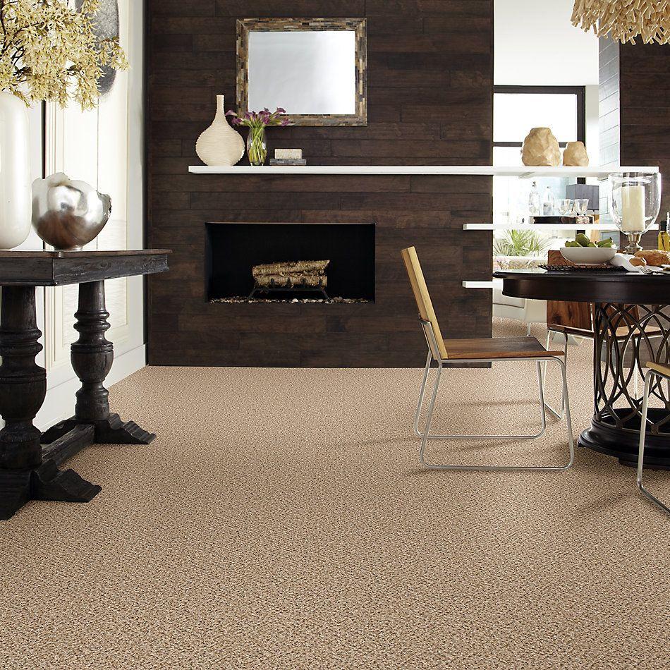 Shaw Floors SFA Dynamic World (b) Truffle 00710_EA145
