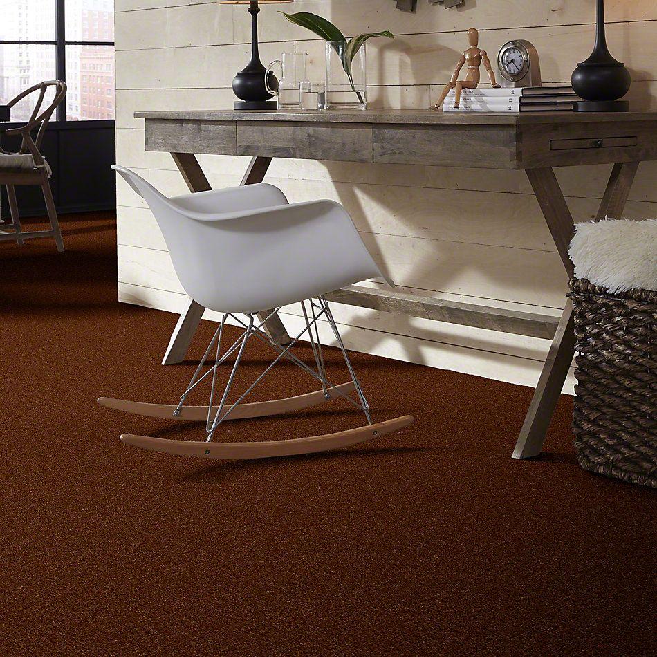 Shaw Floors Queen Zipp Adobe 00710_Q1861
