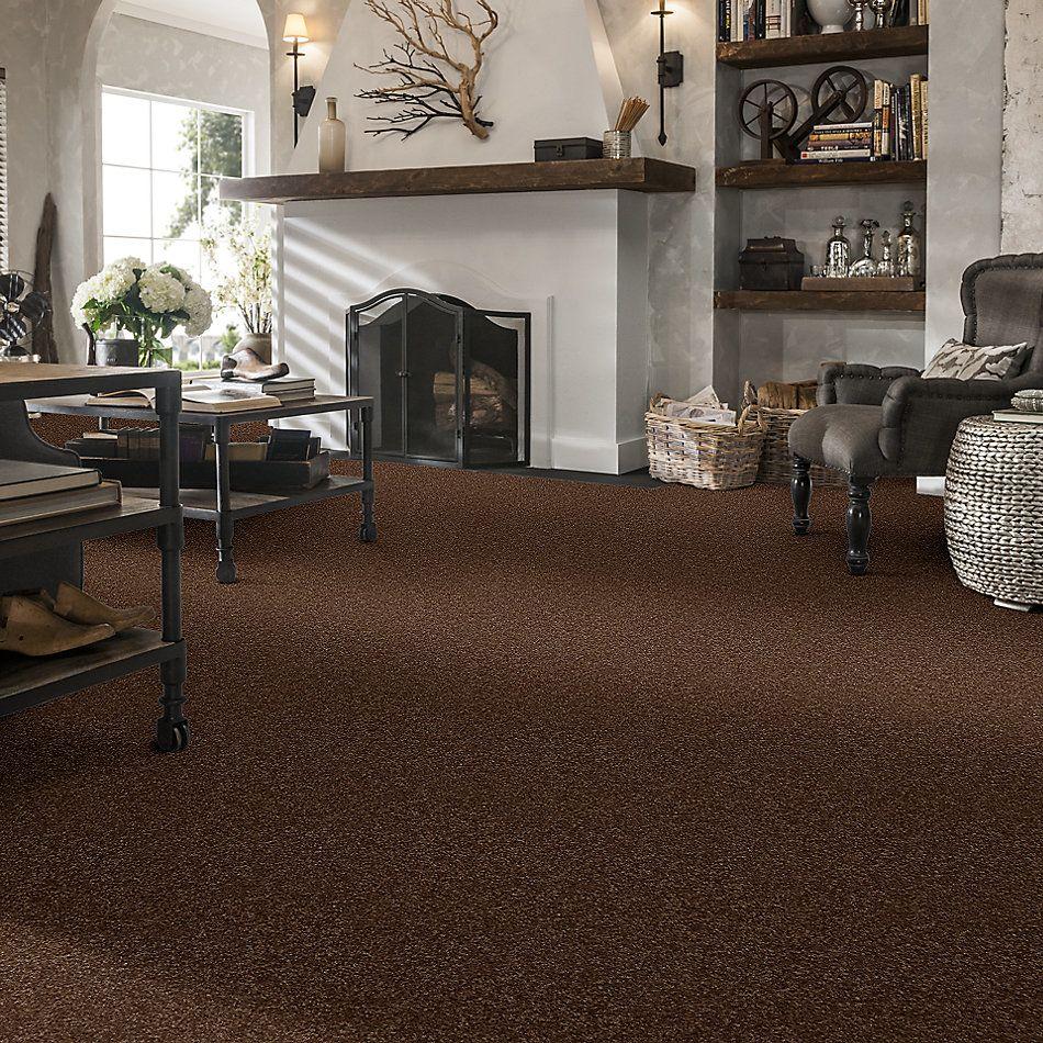 Shaw Floors Queen Harborfields I 12′ Toasty 00710_Q4718