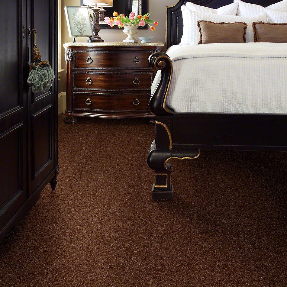 Shaw Floors Queen Versatile Design I 15′ Toasty 00710_Q4784