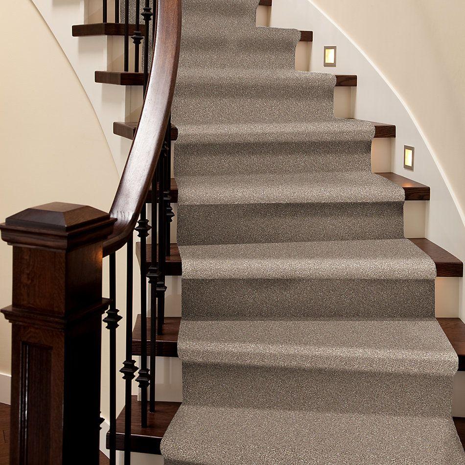 Shaw Floors Roll Special Xv816 Sombrero 00710_XV816