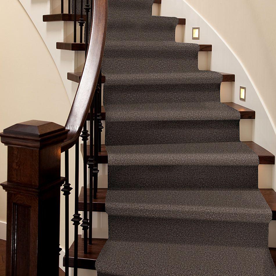 Shaw Floors Roll Special Xv864 Molasses 00710_XV864