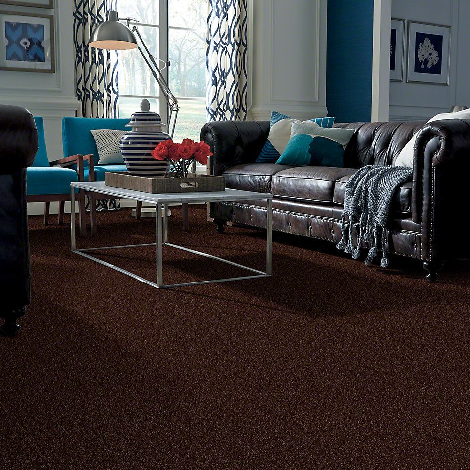 Shaw Floors Couture' Collection Ultimate Expression 12′ Coffee Bean 00711_19698