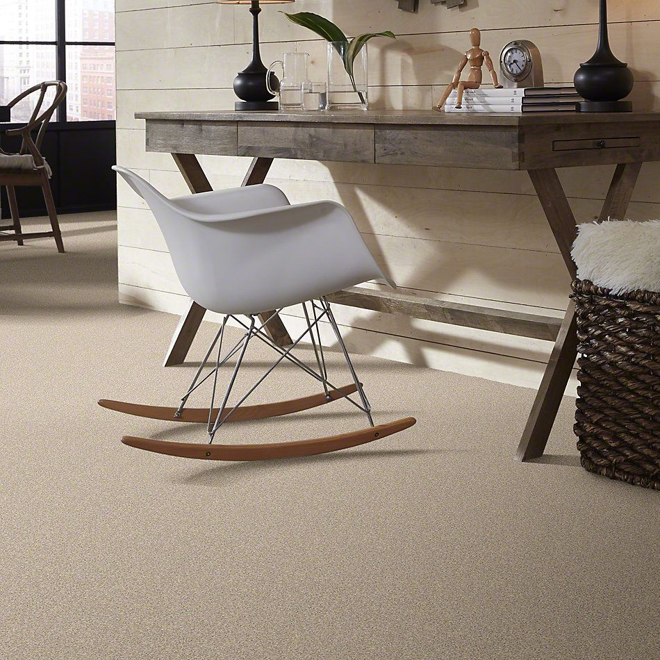 Shaw Floors Foundations Take The Floor Twist I Hickory 00711_5E014