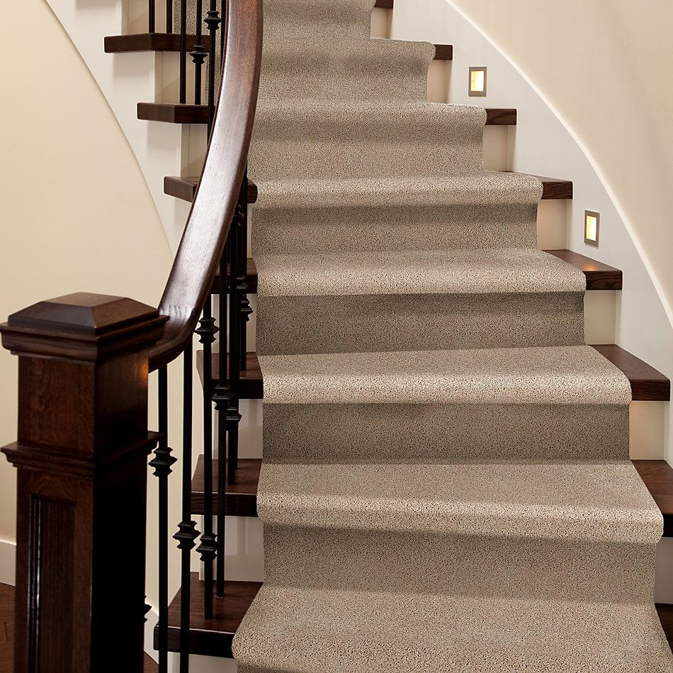 Shaw Floors Value Collections Take The Floor Twist II Net Hickory 00711_5E070