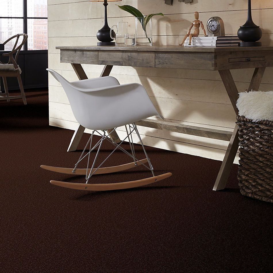 Shaw Floors Value Collections Sandy Hollow Cl II Net Coffee Bean 00711_5E510