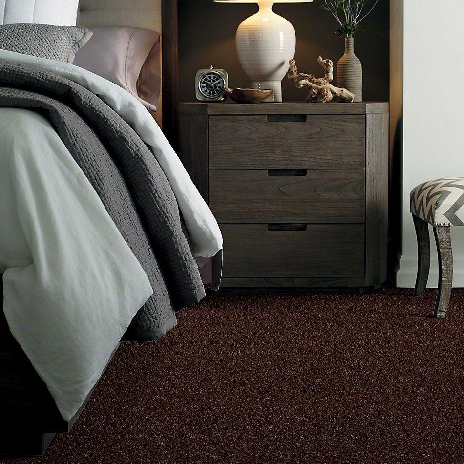 Shaw Floors Magic At Last I 12′ Fudge Brownie 00711_E0200