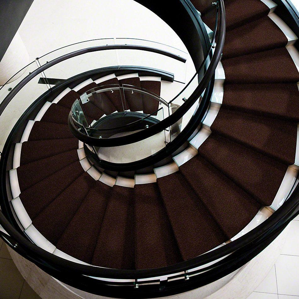 Shaw Floors Sandy Hollow I 12′ Coffee Bean 00711_Q4273