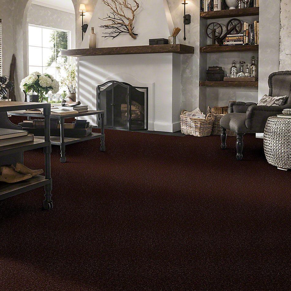 Shaw Floors Sandy Hollow III 12′ Coffee Bean 00711_Q4277