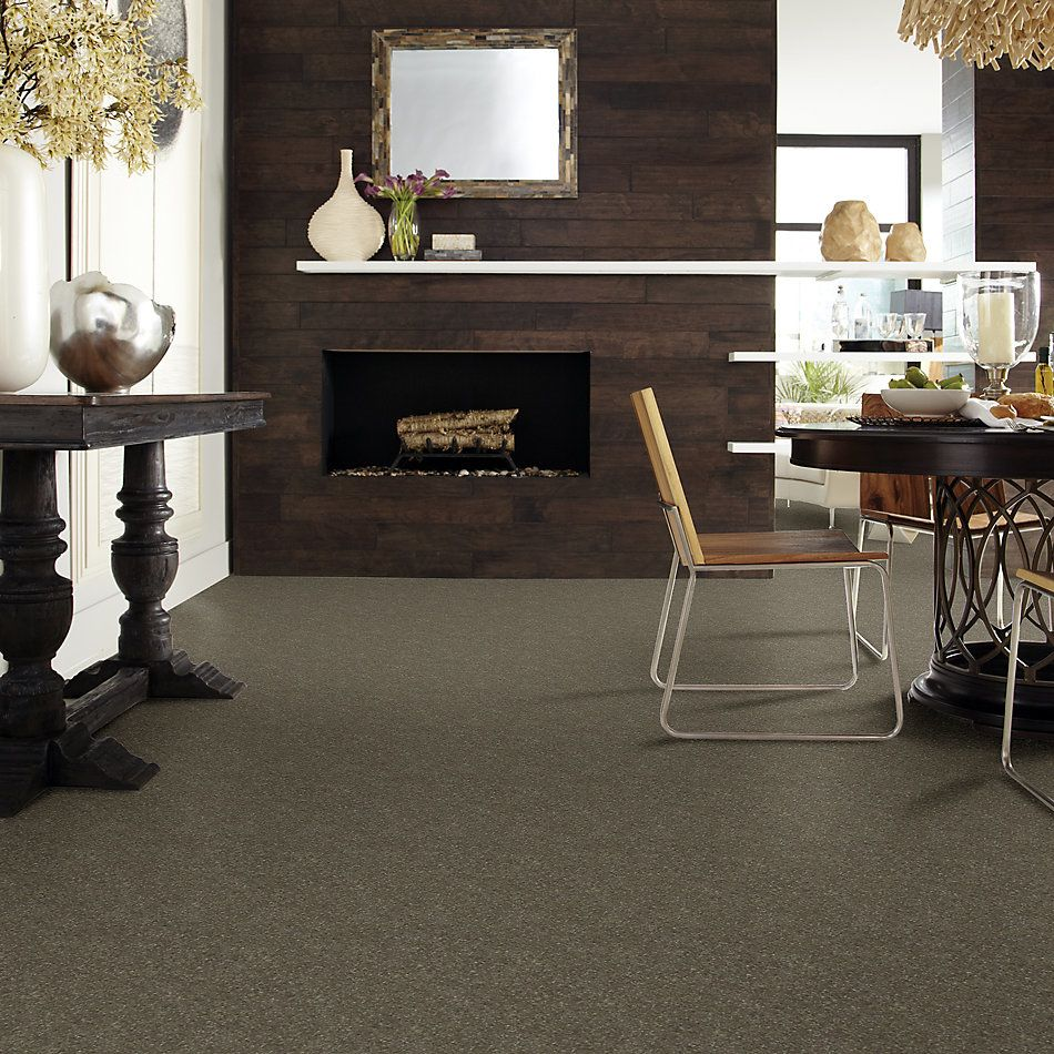 Shaw Floors Secret Escape I 15′ Tree Bark 00711_E0049