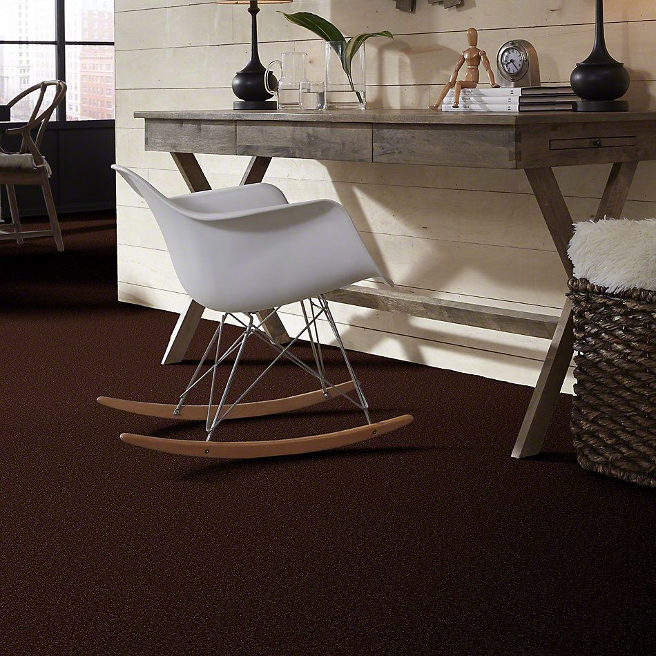 Shaw Floors Foundations Sandy Hollow Classic II 12 Coffee Bean 00711_E0550