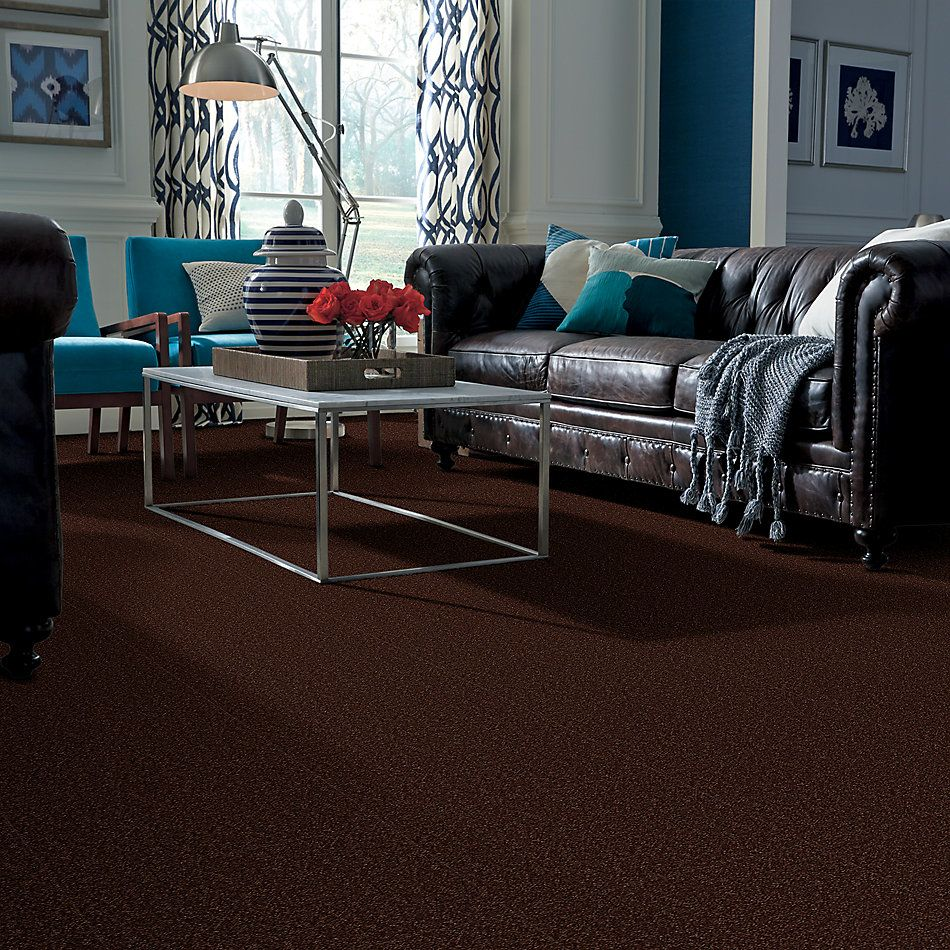 Shaw Floors Sandy Hollow Classic III 15′ Coffee Bean 00711_E0553