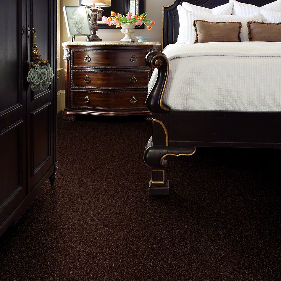 Shaw Floors Sandy Hollow Classic Iv 12′ Coffee Bean 00711_E0554