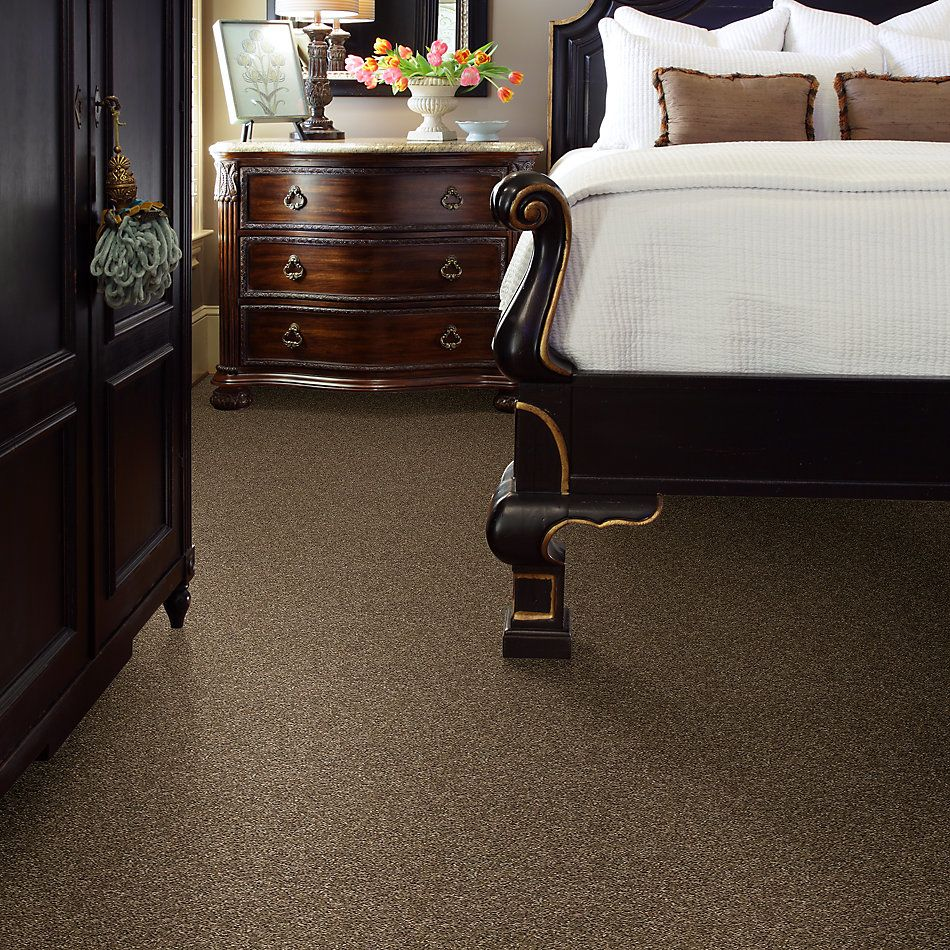 Shaw Floors Value Collections Shake It Up Solid Net Beaver Creek 00711_E9857