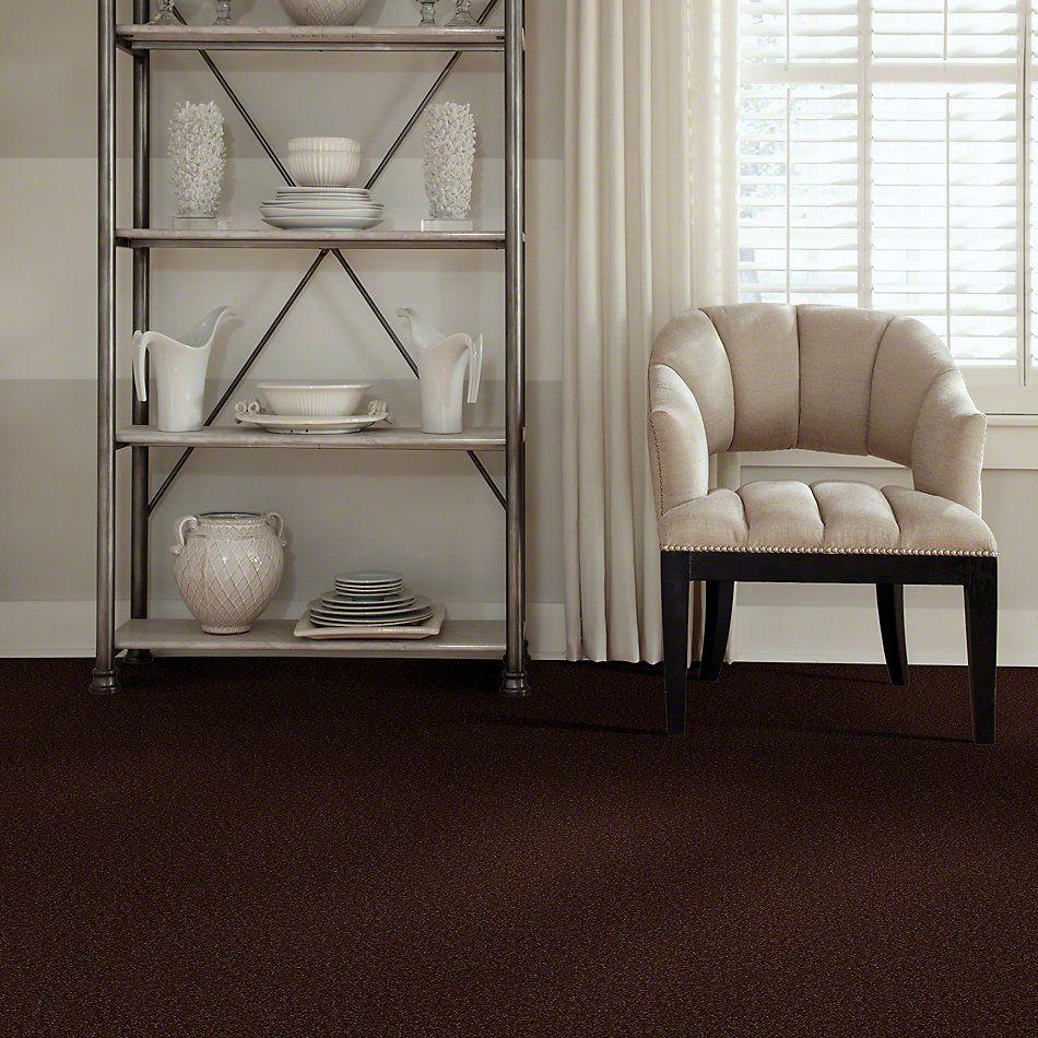 Shaw Floors SFA Shingle Creek III 12′ Coffee Bean 00711_EA516