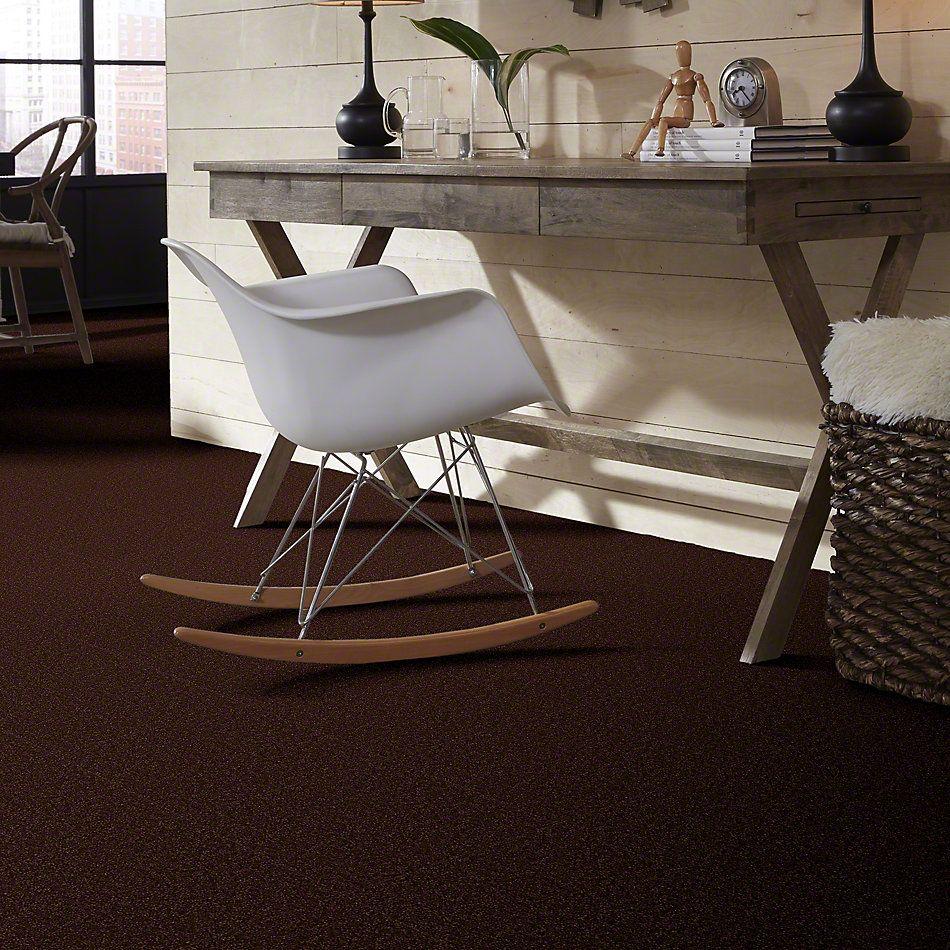 Shaw Floors SFA Shingle Creek Iv 15′ Coffee Bean 00711_EA519