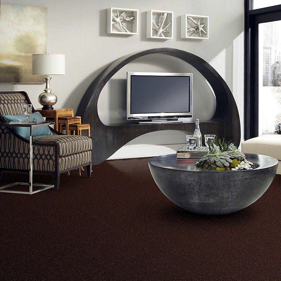 Shaw Floors Shaw Design Center Sweet Valley III 15′ Coffee Bean 00711_QC425