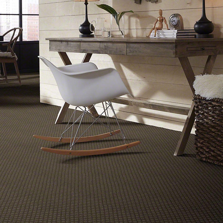 Shaw Floors Shaw Flooring Gallery Go Beyond Graphite 00712_5512G
