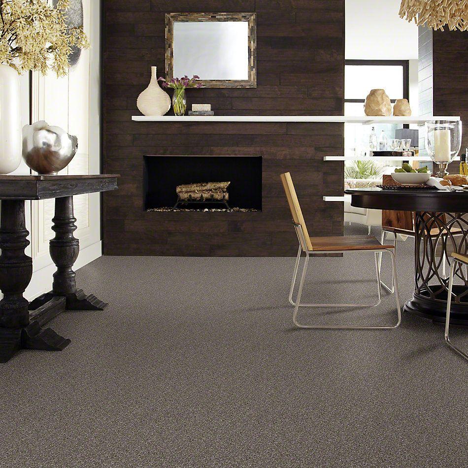Shaw Floors SFA Inspiring Graphite 00712_EA508