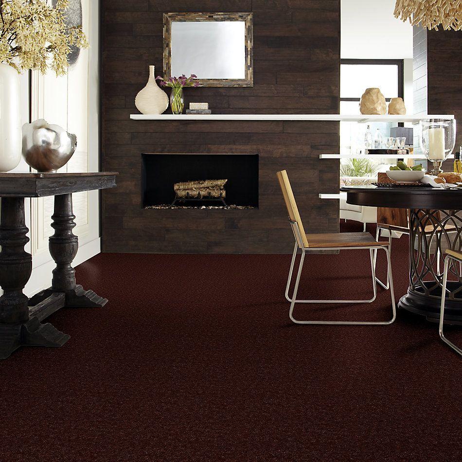 Shaw Floors Home Foundations Gold Warrior Classic Buckeye Brown 00712_HGC80