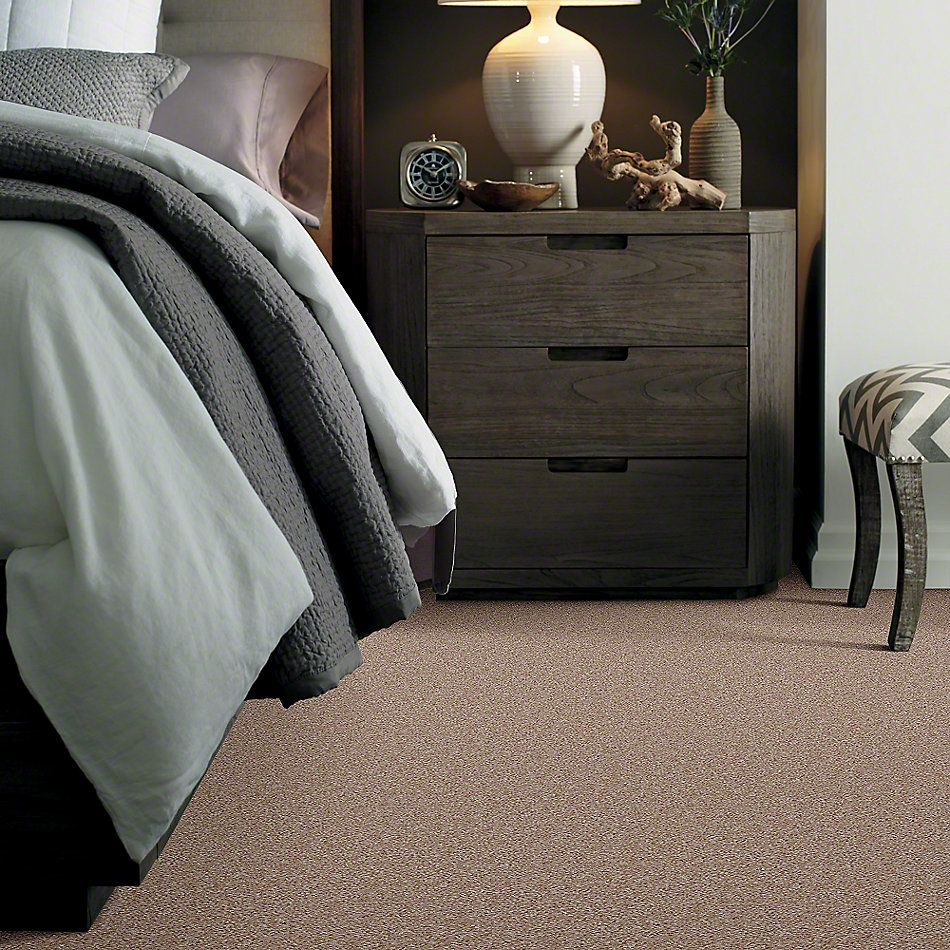 Shaw Floors Anso Premier Dealer Unique Style Targa 00712_Q2196