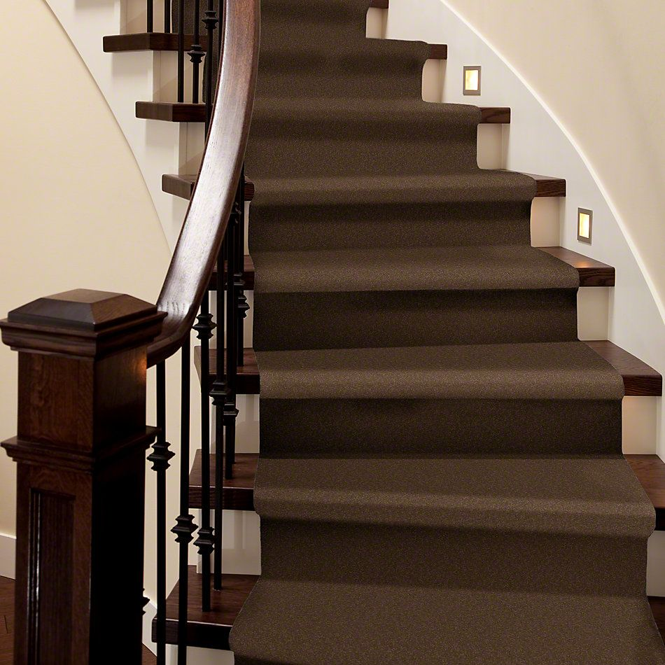 Shaw Floors Everyday Comfort (s) Dark Spice 00713_52P07