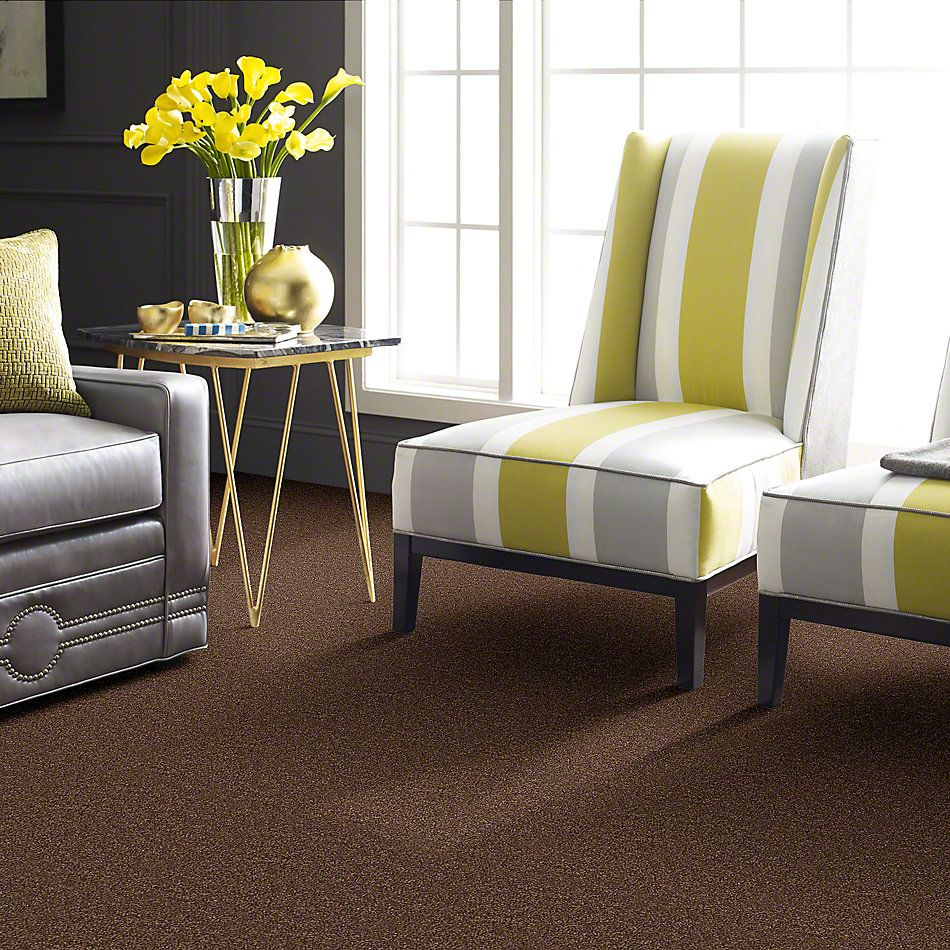 Shaw Floors Fusion Value 300 Twig 00713_E0281