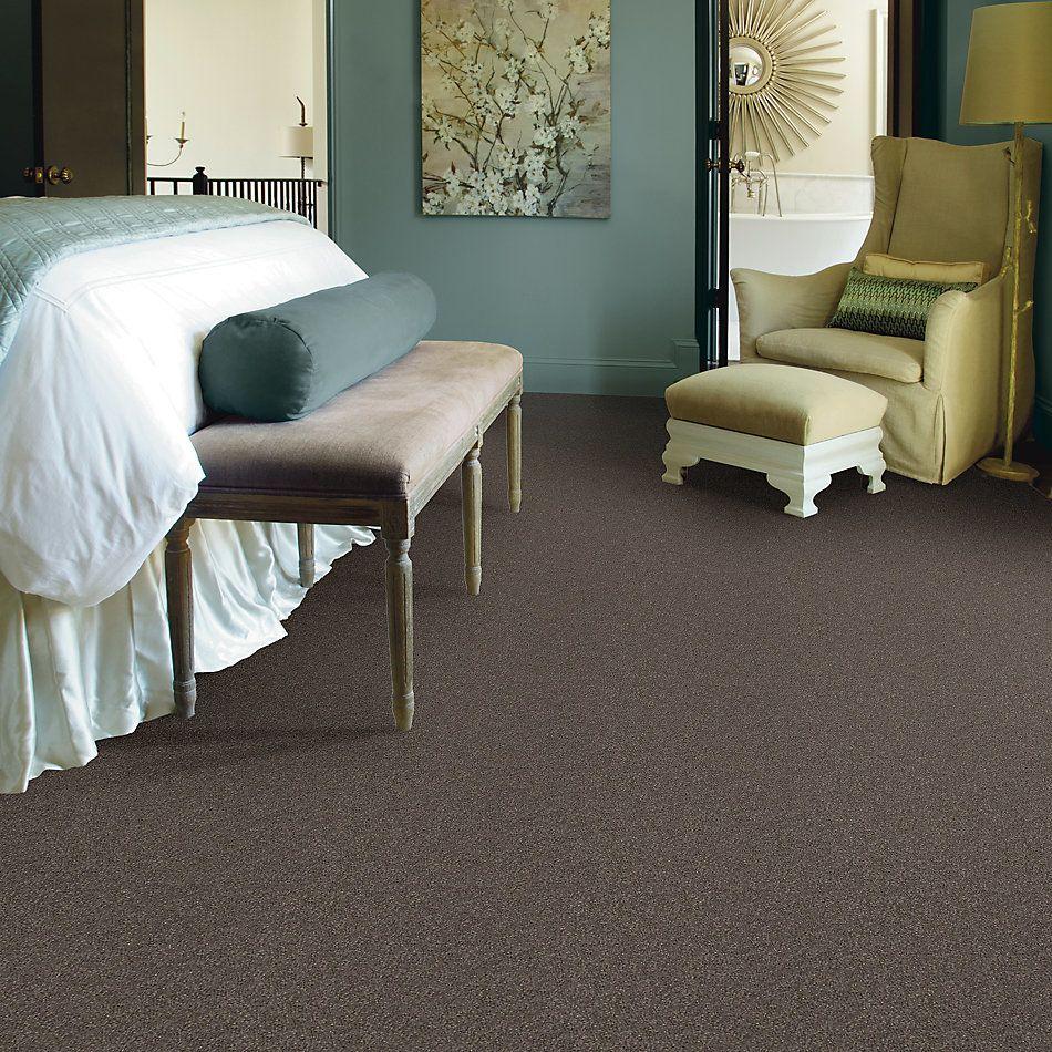 Shaw Floors SFA Unparalleled Delight III 15′ Riverbed 00713_EA671