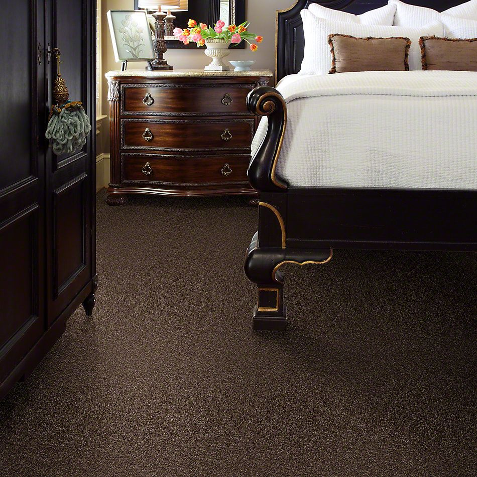 Shaw Floors Shaw Flooring Gallery In The Zone (s) Chocolate Chip 00714_5525G