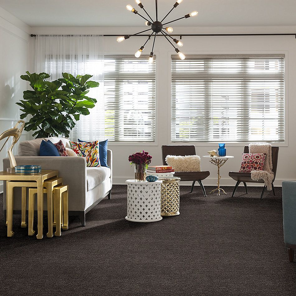 Shaw Floors Bellera Calm Simplicity II Antelope 00714_5E273