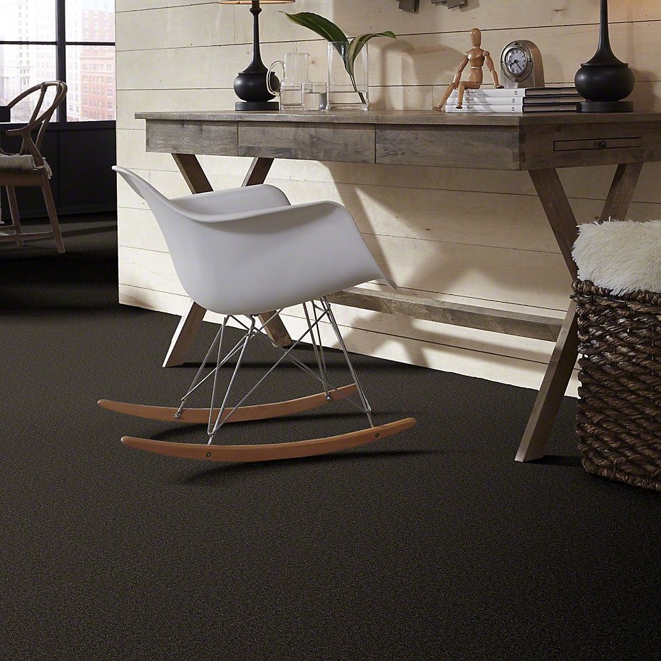 Shaw Floors True Soft Refined Vision I Tuxedo 00714_E0726