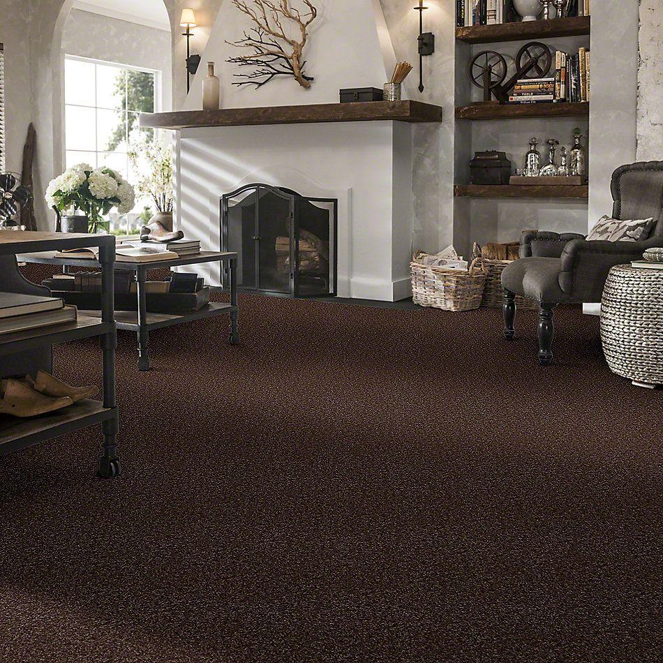 Shaw Floors Vermont (s)12′ Montana 00714_E0263