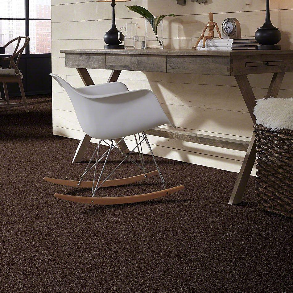 Shaw Floors Vitalize (s) 12′ Creek Bank 00714_E0276