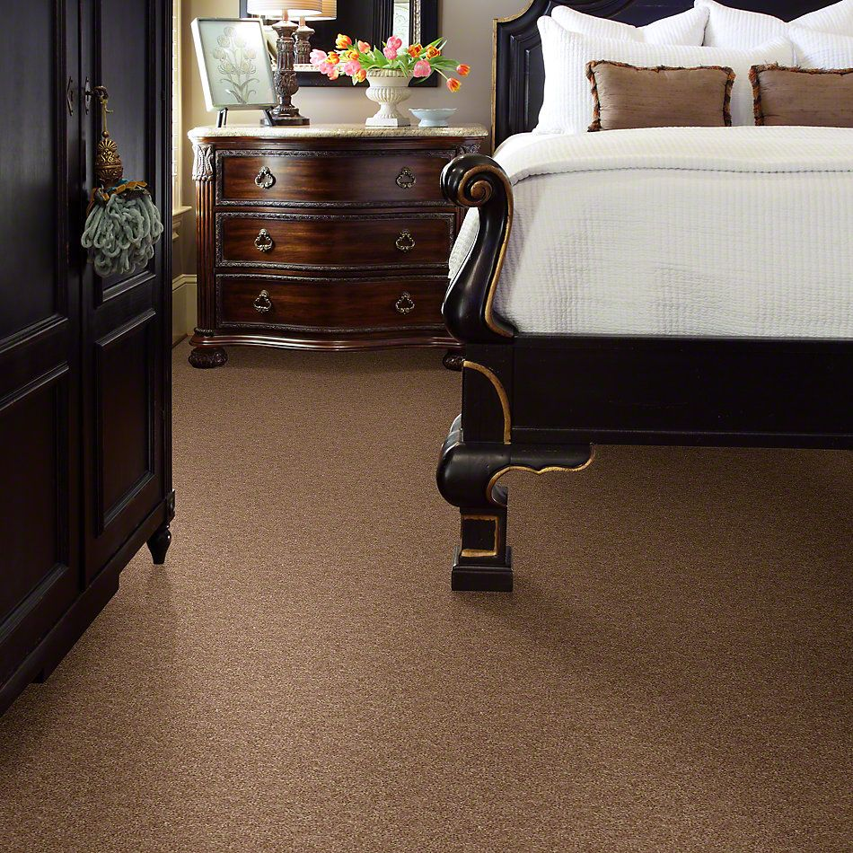 Shaw Floors Expect More (s) Vintage Tan 00714_E0473