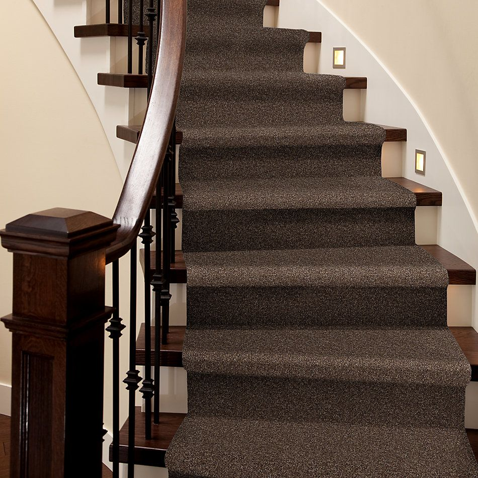 Shaw Floors Cabinanet Solid Chocolate Chip 00714_E0663