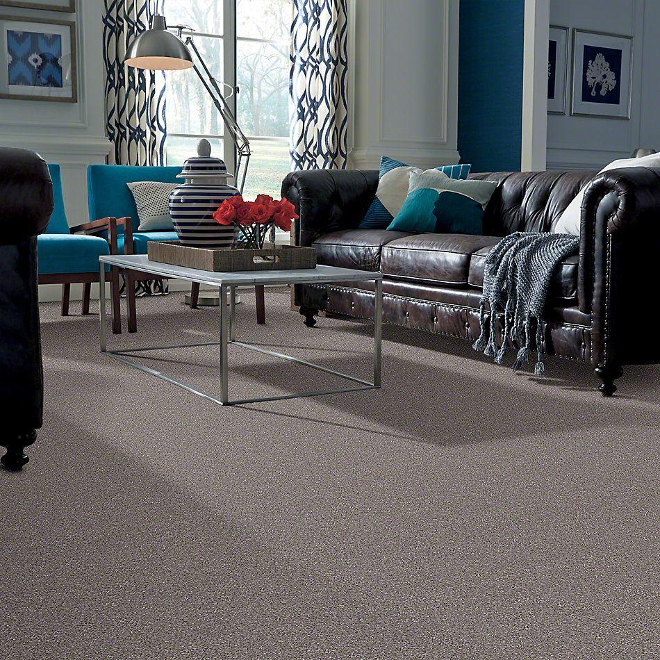 Shaw Floors SFA Majority Rules Moccasin 00714_EA607