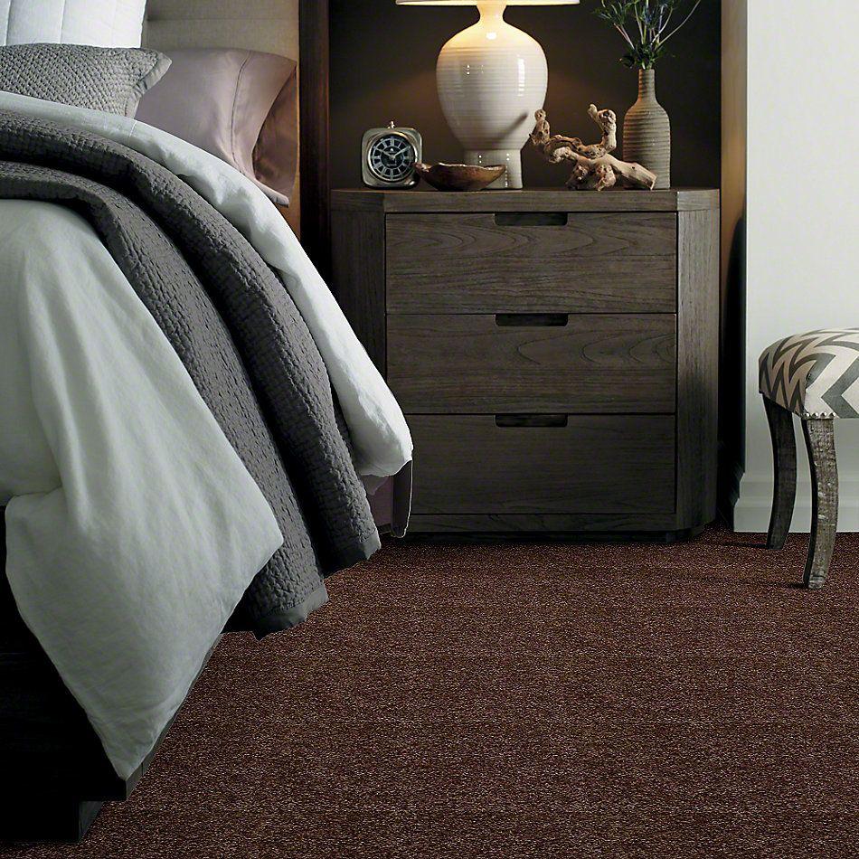 Shaw Floors Ever Again Nylon Eco Beauty Leather Saddle 00714_PS605