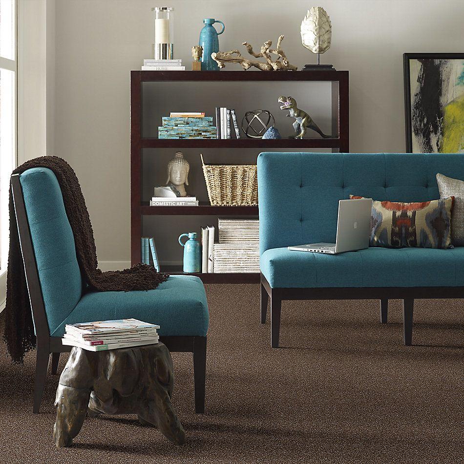 Shaw Floors Oxnard Rich Leather 00714_SNS42