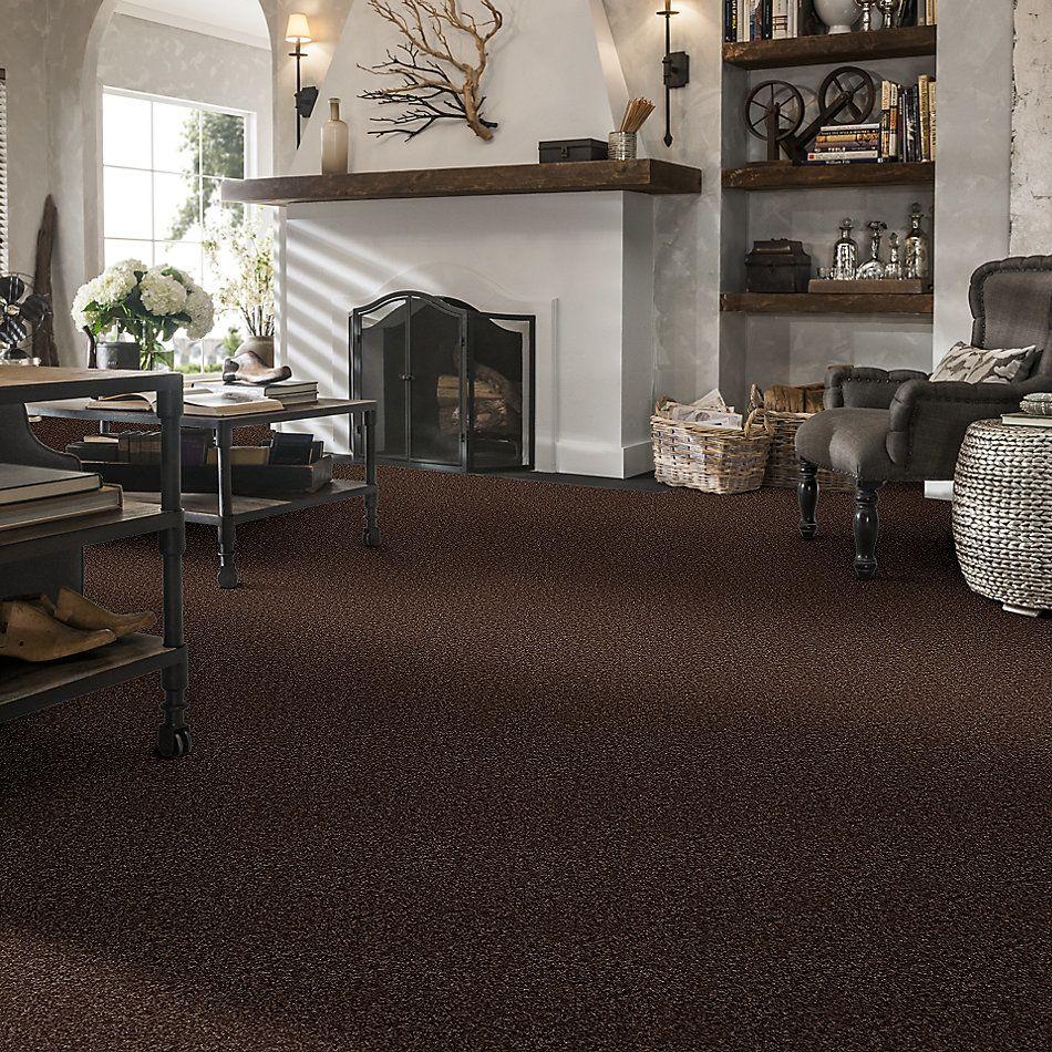 Shaw Floors Roll Special Xv463 Montana 00714_XV463