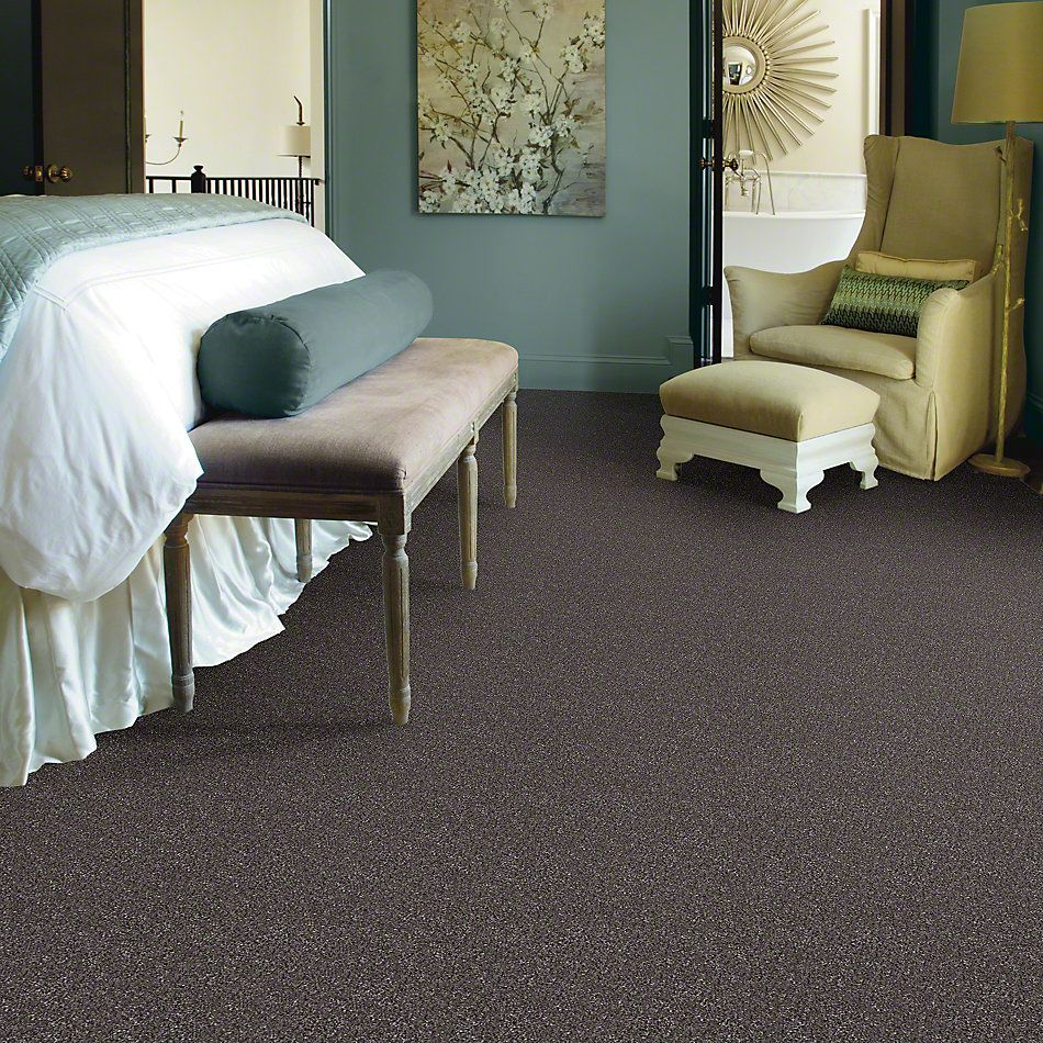 Shaw Floors Shaw Design Center Fantastical Rich Earth 00715_5C790